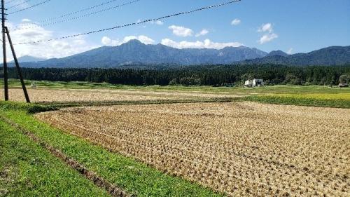 01d 700 20200923_岡沢からの妙高山