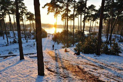 09b 500 frosty woods