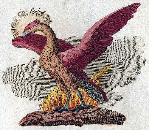 02a500 phoenix 1806