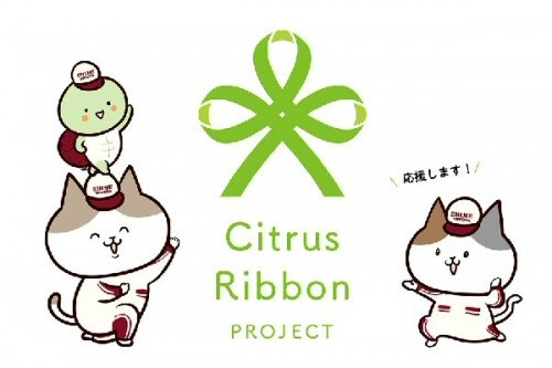 03b 500 citrus ribbon project
