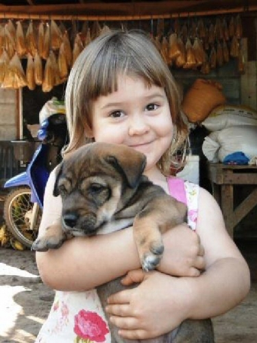 04a 500 attached a girl with a puppy
