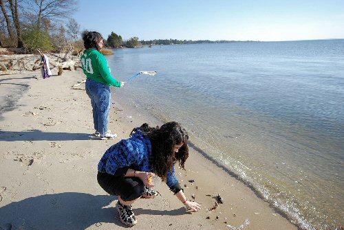 03a 500 beach combing