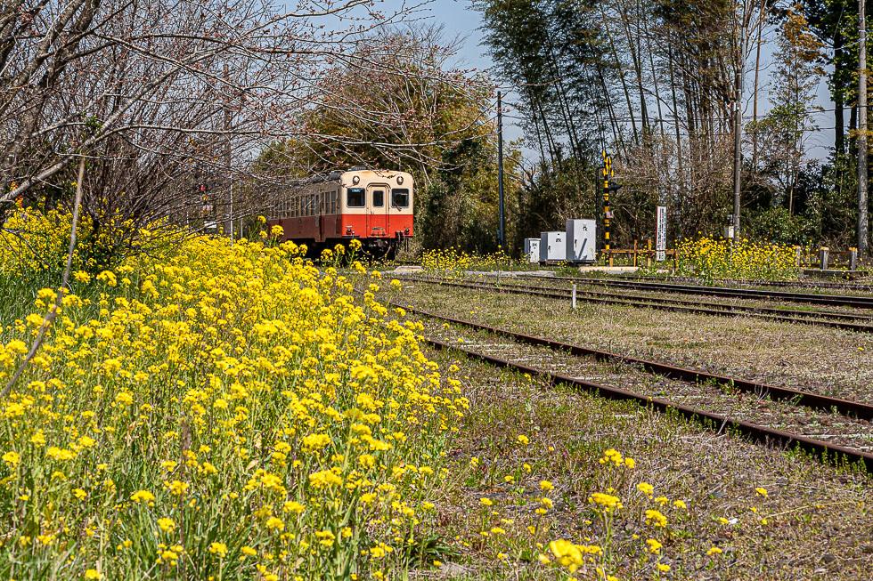 090403小湊鉄道980-0071