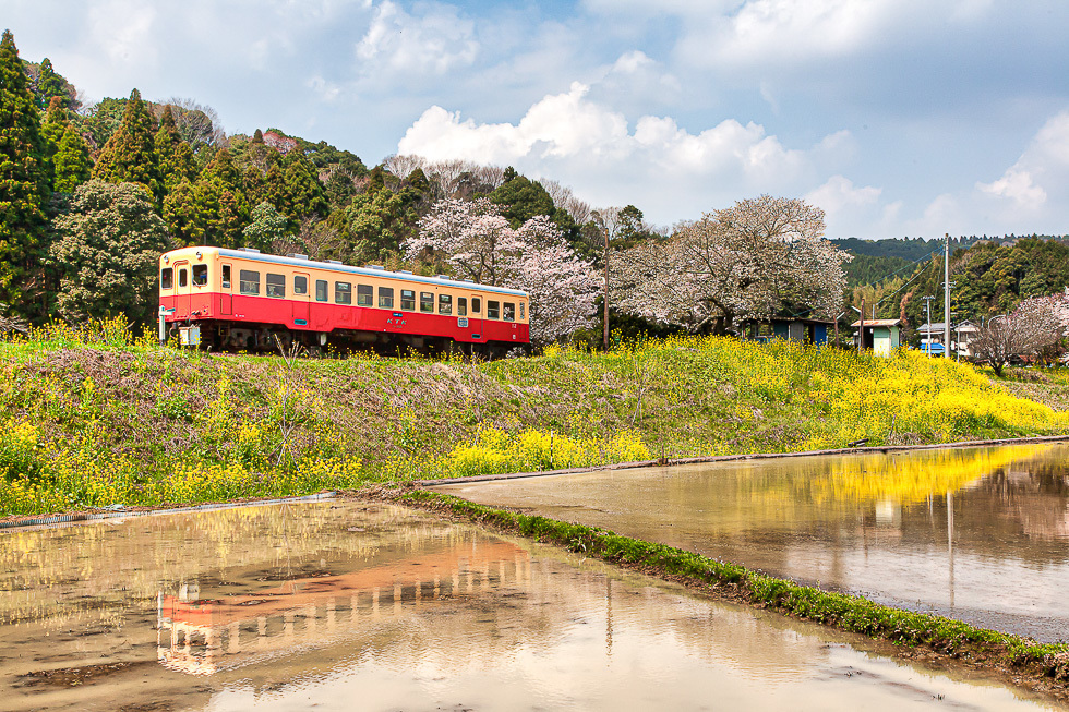 150416小湊鐵道980-4