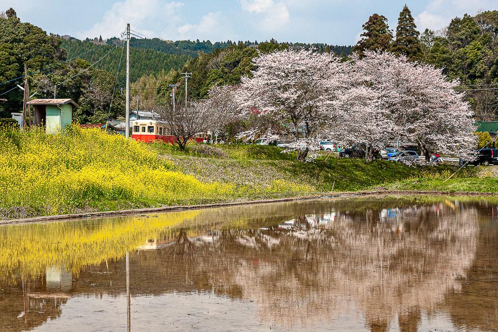 150416小湊鐵道980-5