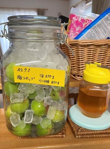 ケンシの梅酒20200700005