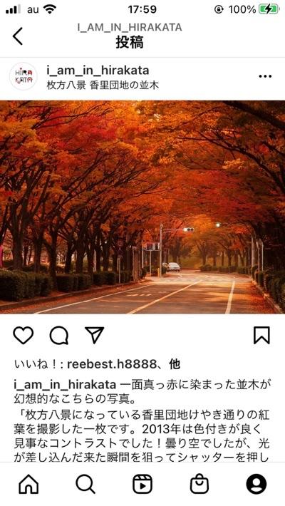 fc2blog_20201119191327f65.jpg