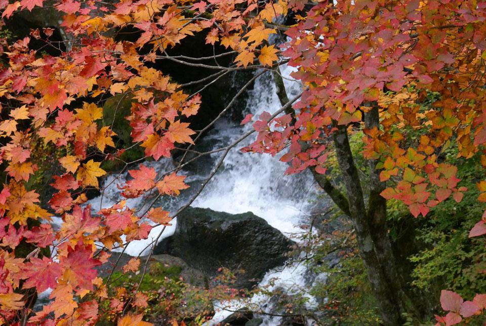201015-20868 竜頭の滝 960×645