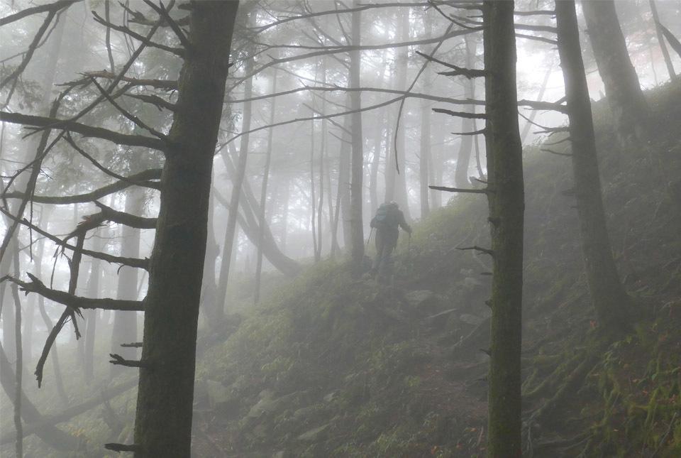 20824 霧の中を進む 960×645