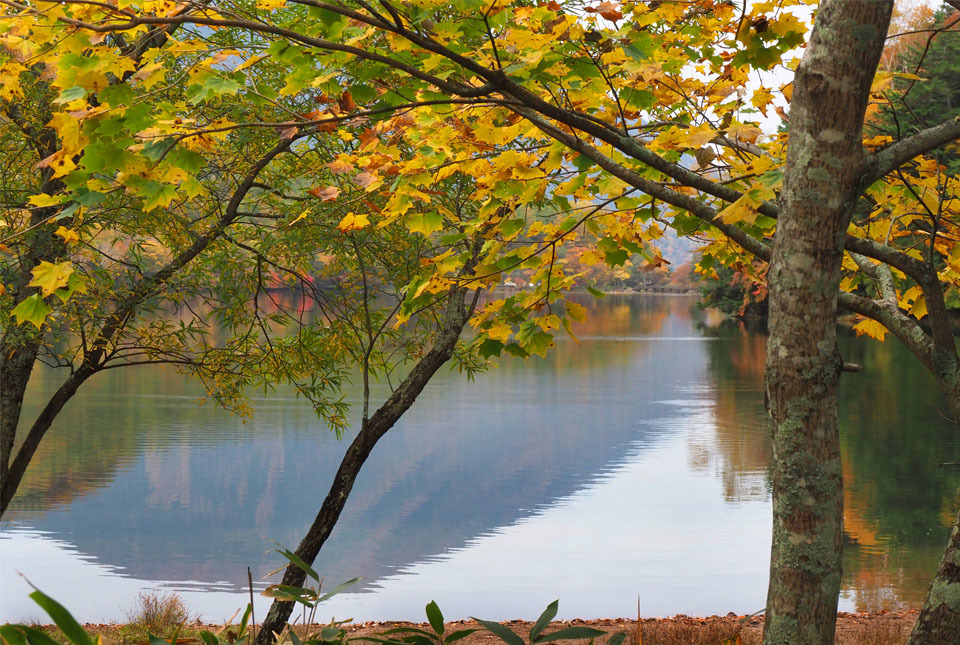 69295 湯の湖/男体山を映して 960×645
