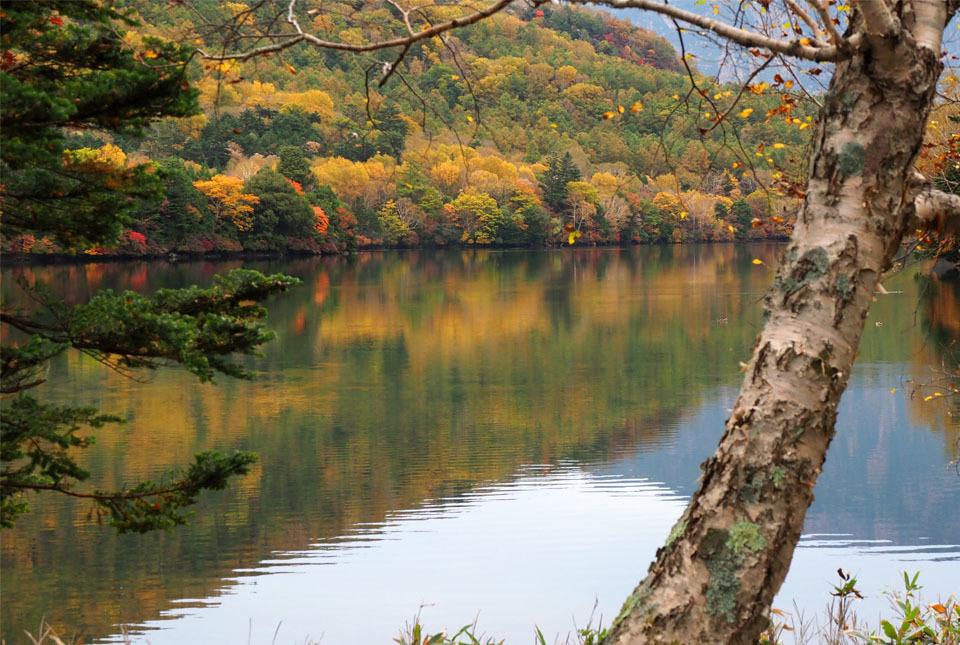 69296 湯の湖/紅葉を映して 960×645