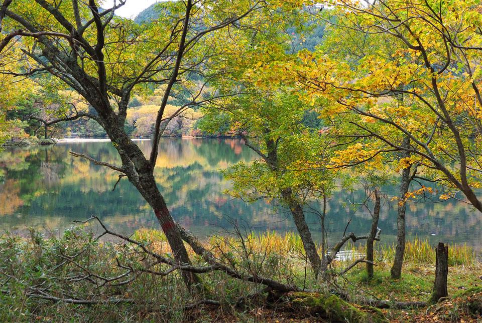 69302 湯の湖/紅葉を映して 960×600