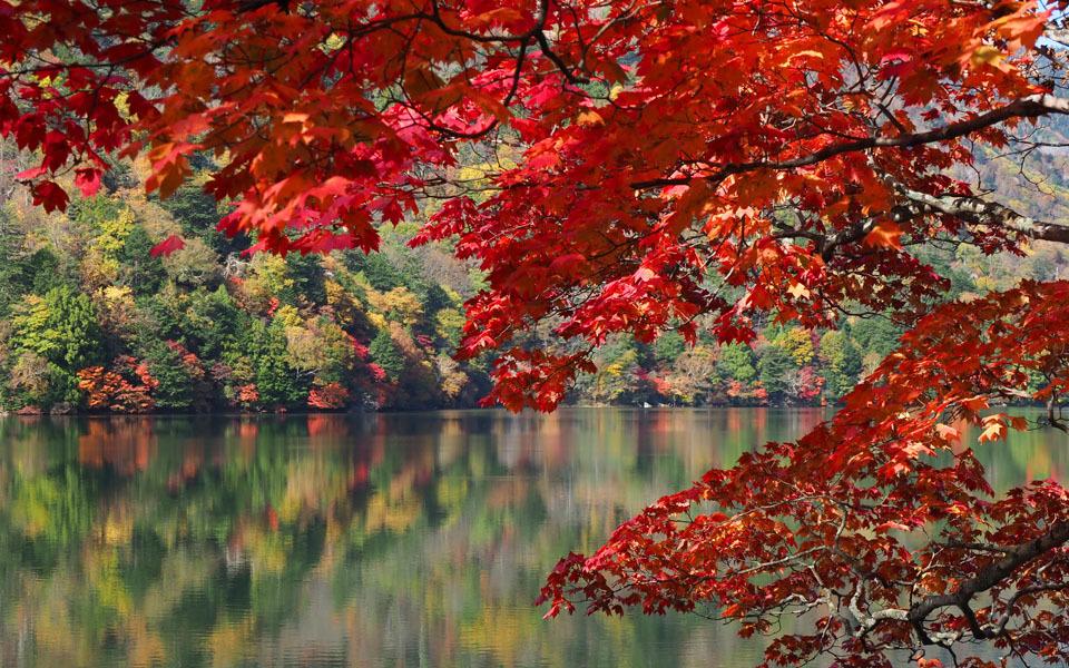 69357 湯の湖の紅葉 960×600