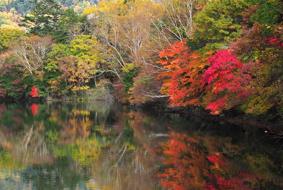 69344 湯の湖/紅葉を映して 960×600