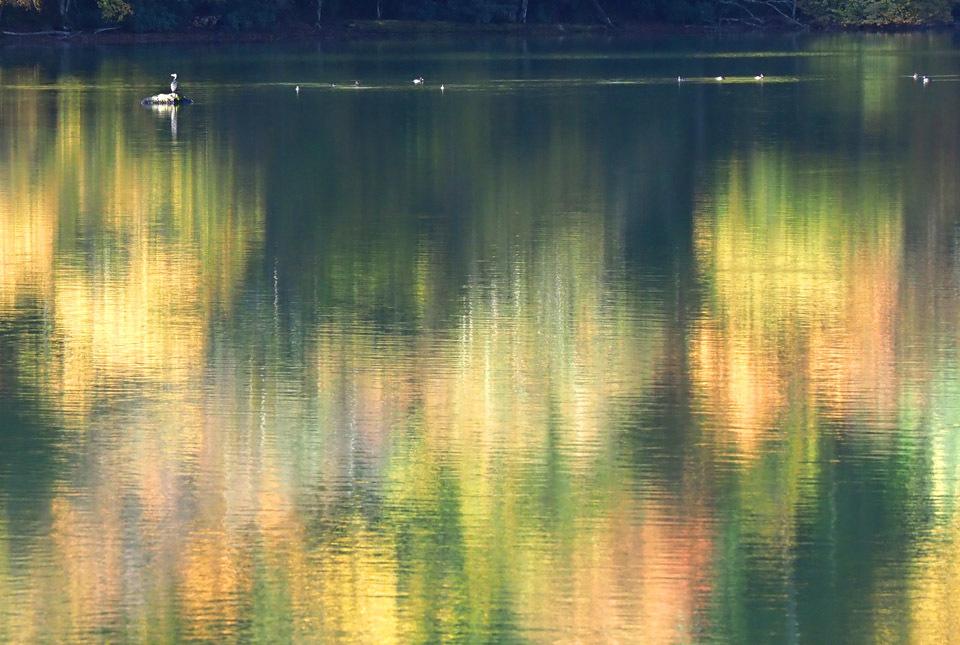 69353 湯ノ湖 紅葉印象派2 960×645