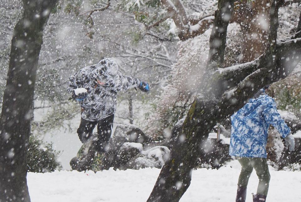 5315 雪に遊ぶ2 960×645