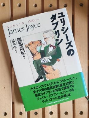 jamesjoycebook0620