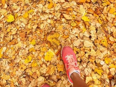 autumnleaves1020