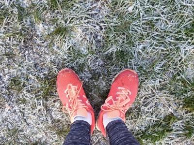 snowrunnewyearseve12204