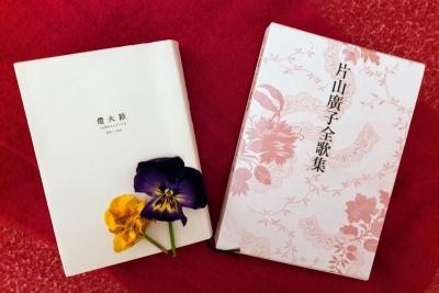 katayamahirokotoukasetsu030221
