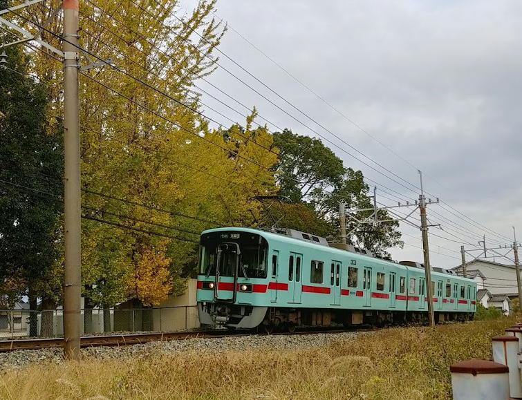 西鉄電車とイチョウ