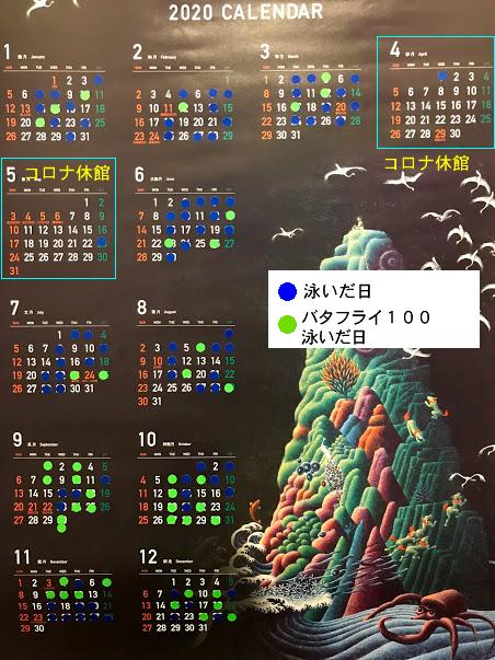 水泳カレンダー