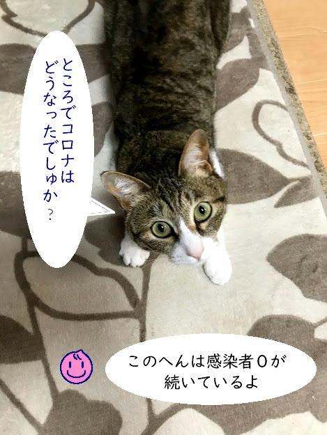chiko0701-5.jpg