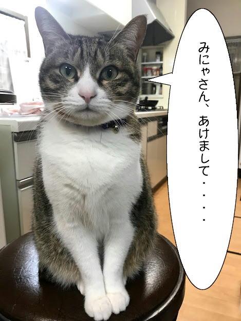 chiko20210103-1.jpg