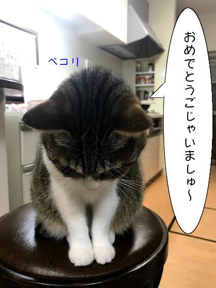 chiko20210103-2.jpg