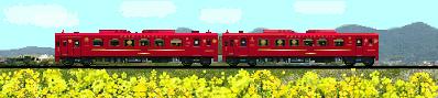 ことこと列車のイラスト 菜の花