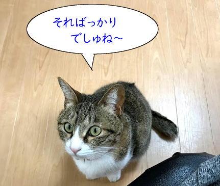 kubiwa3.jpg