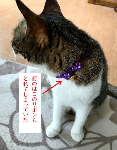 kubiwa6.jpg