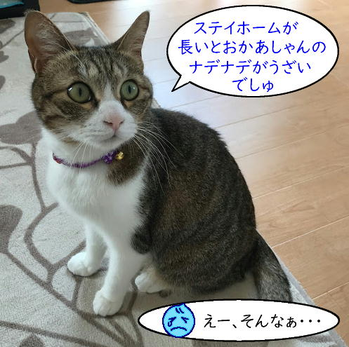 kubiwa7.jpg
