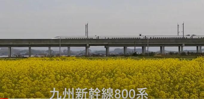 nanohana800k-cap.png
