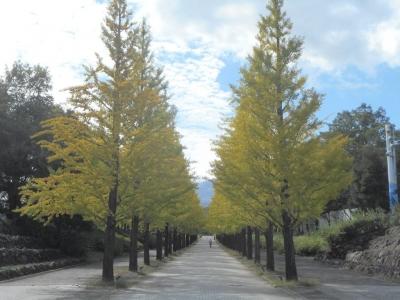 azumakouen32.jpg