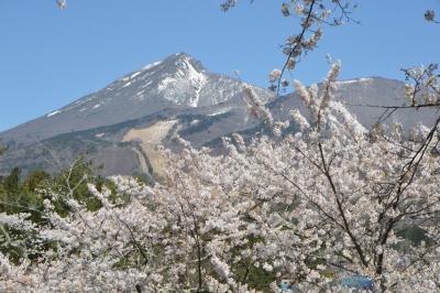 kamegajo042101.jpg