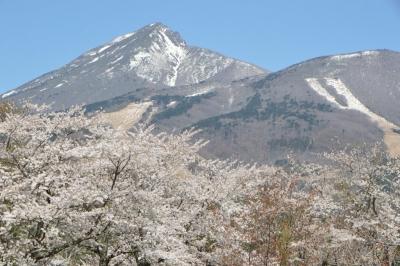 kamegajo042104.jpg