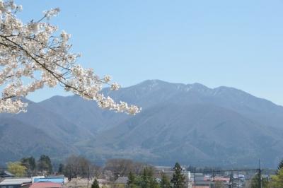 kamegajo042108.jpg