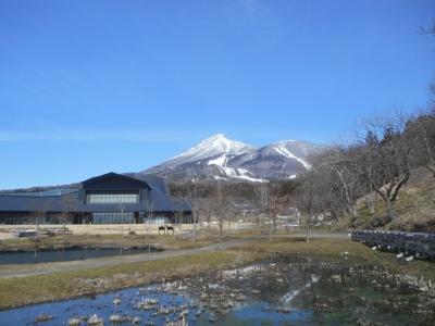 kamegajo764.jpg