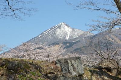 kamegajo822.jpg
