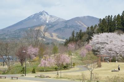 kamegajo846.jpg
