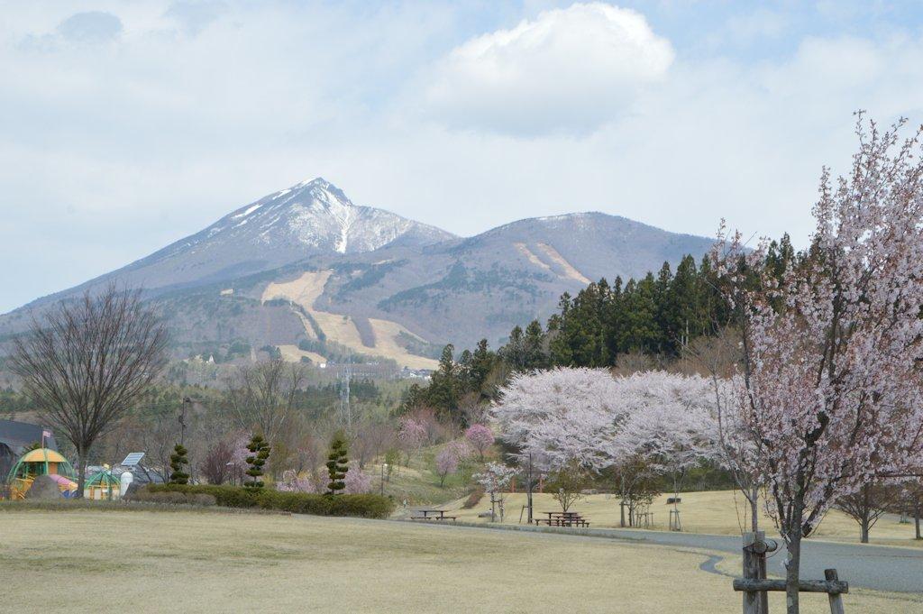 kamegajo848.jpg