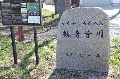 kannonji-sakura03.jpg