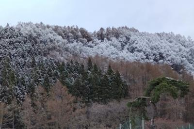 kannonjigawa040907.jpg