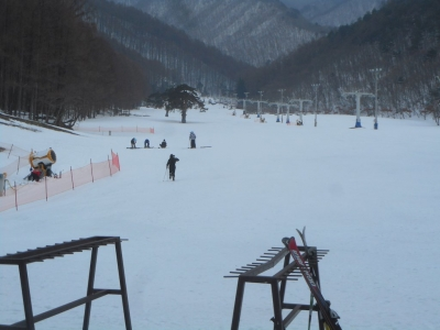risuteru-suki20122.jpg