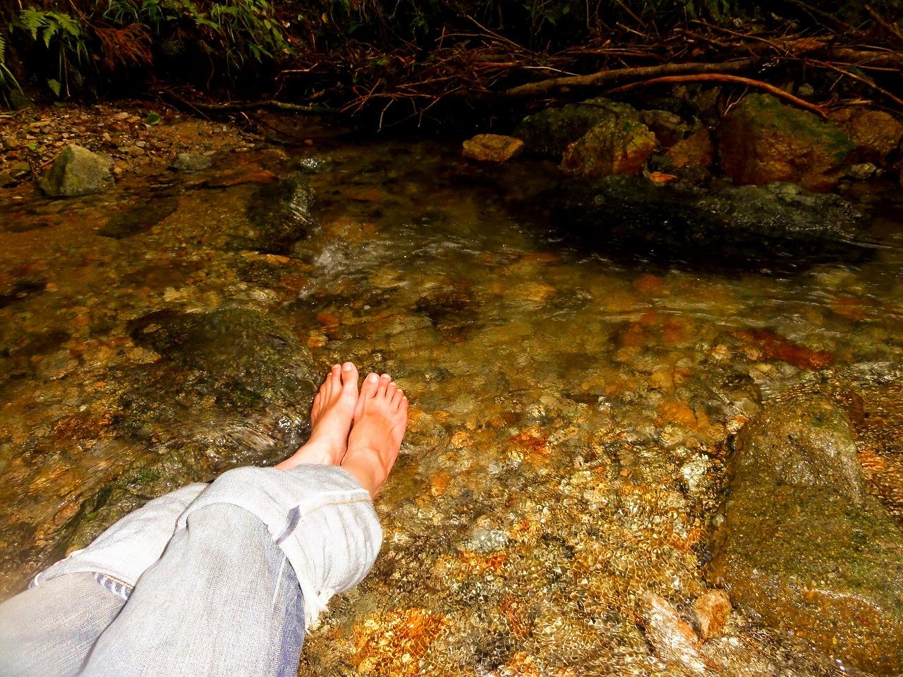 ジャイロキャノピーで涼みに行った。(岩湧の森)