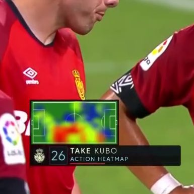 Kubo's heatmap is shaped like a goat