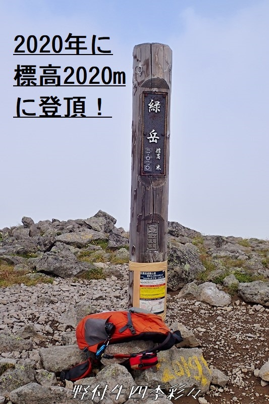 37s-TG4-20200729-085327-0.jpg