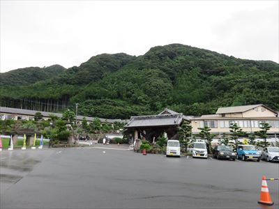 mikado_07_R.jpg