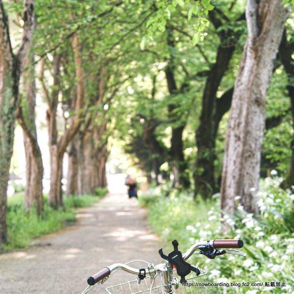 名古屋 レンタサイクル 市内サイクリング